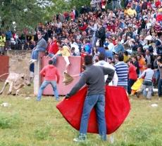 Imagen del Lavalenguas
