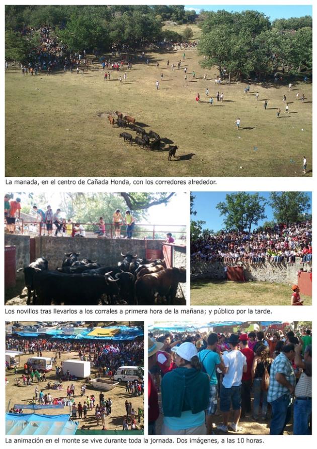 Foto 1 - 76 personas atendidas y un herido por asta de toro en la fiesta de La Compra