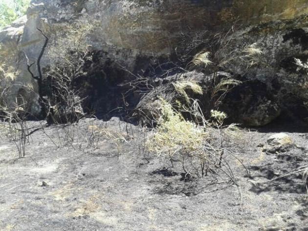 Conato de incendio en Valonsadero