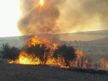 Incendio en Noviercas