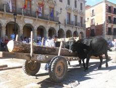 Carga de troncos en la plaza Mayor
