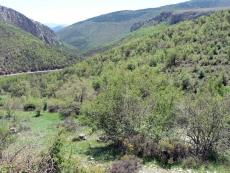 Vista del valle del Isuela desde Beratón