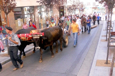 Las carretas por las calles sorianas