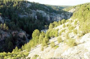 Monte de Herrera, gestionado con una junta de propietarios