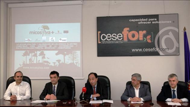 Acto de presentación del proyecto