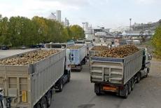 Camiones a la entrada de la factoría
