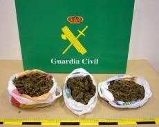 Cogollos de marihuana incautados