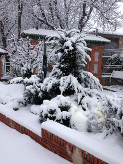 Nieve caída en Ágreda hoy