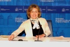 Tejerina en la presentación del plan
