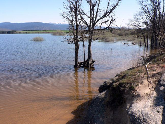 En Herreros, el agua llega hasta el robledal de la zona recreativa