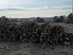 Pila de leña en enero en el Monte de las Ánimas