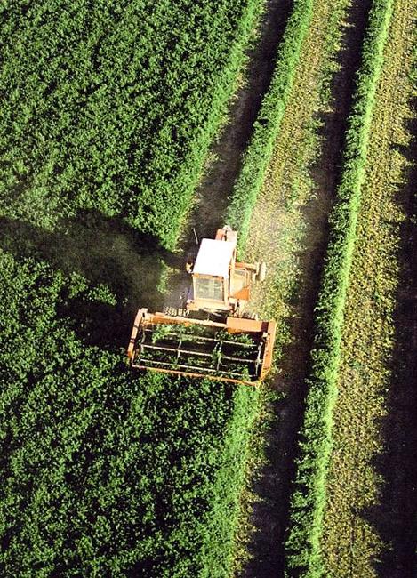 Maquinaria en un cultivo.