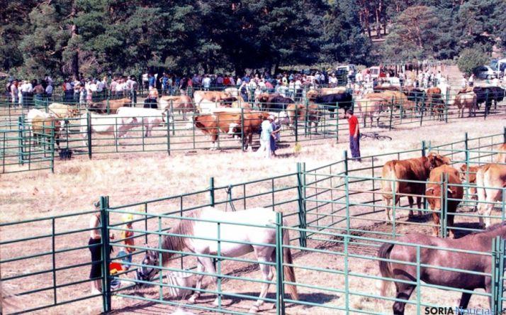 El 14 de septiembre Covaleda celebra su X Feria Ganadera