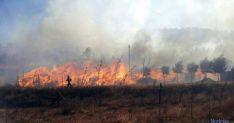 Incendio en las inmediaciones de Talveila