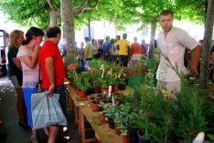 Este sábado, una edición más del Mercado Ecológico de Soria