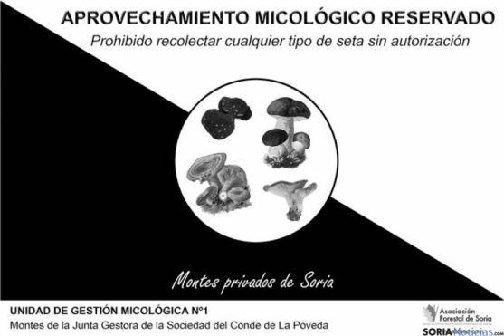 asfoso-regulacion micologica