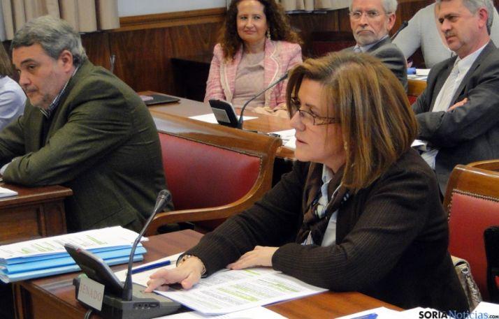 Marimar Angulo, en una comisión del Senado.
