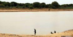 Río Senegal visto desde la orilla mauritana; al otro lado, Senegal