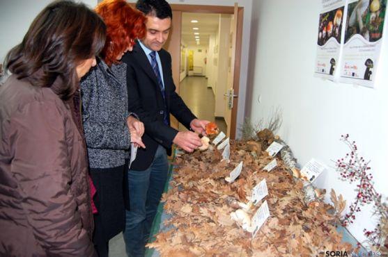 Exposición micológica en La Dehesa