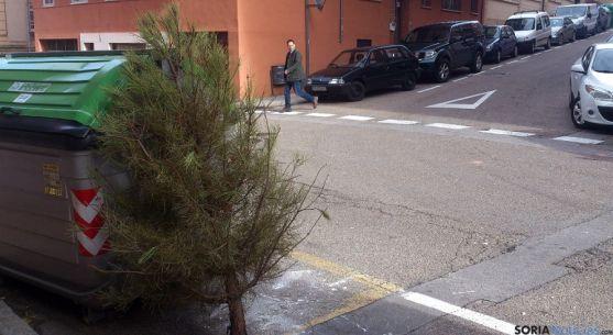 Árbol navideño abandonado en la calle Cortes.