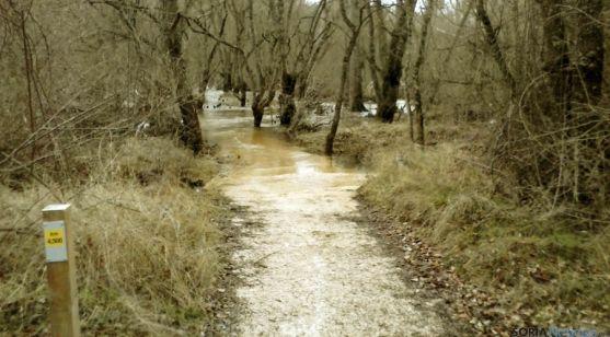 Uno de los senderos inundado en el Duero.