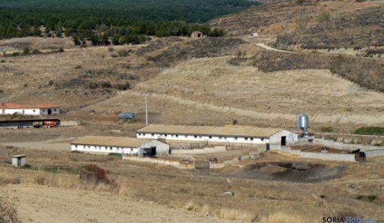 Instalaciones para la cría de serrana en Taniñe.