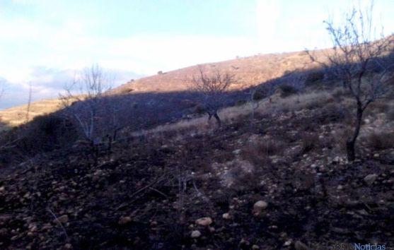 Una de las zonas devastadas por el fuego.
