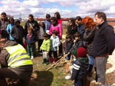 Plantando nuevos árboles