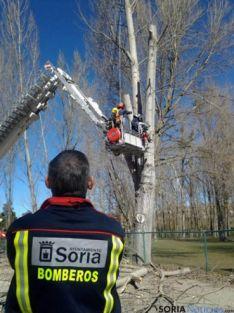 Aprendiendo a manejar maquinaria forestal