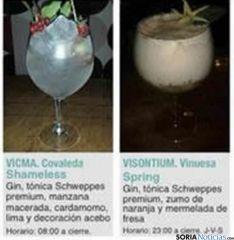 Guía de las bebidas que se ofrecen en la Semana del Gin&Tonic