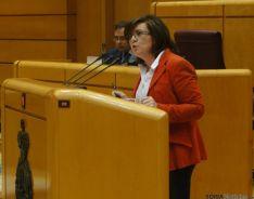 Angulo en el Senado