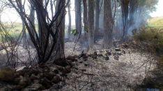 Los rescoldos tras apagar las llamas. / SN