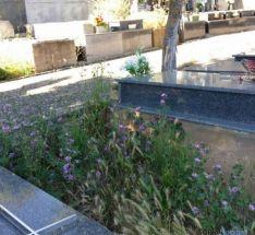 Estado del cementerio
