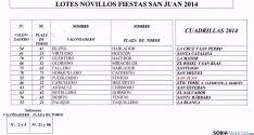 Lote de novillos San Juan 2014