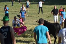 Lavalenguas 2014
