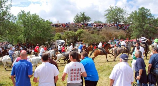 Los caballistas arropan a la manada en el arranque de La Saca 2014