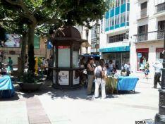 Mercado ecológico en San Esteban