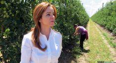 Silvia Clemente en los frutales de La Rasa. / Jta.
