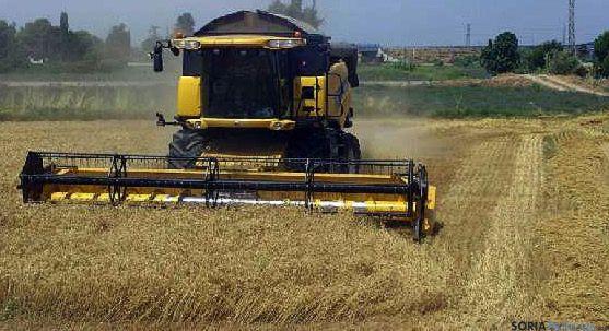 Una máquina cosechadora laborando en un campo de la provincia. / SN