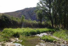 Río Abión en El Burgo. Foto: SyM