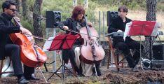 Sinfonía de setas en Navaleno