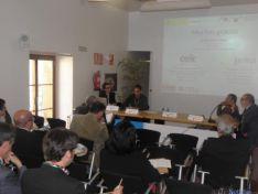 Foto 3 - Soria puede ser autosuficiente en energía térmica para cubrir las necesidades de la ciudad