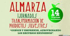 El iclo de almarza, pionero en Soria.