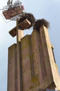 Retirada del nido de cigüeñas. / SN