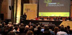 Presentación de la estrategia 'AgroHorizonte 2020'. / Jta.