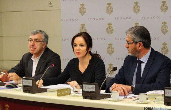La consejera Silvia Clemente, este lunes en el Senado. / Jta.