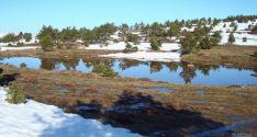 La Laguna del Buey