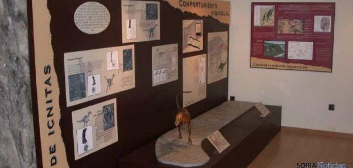 Aula Paleontológica de Villar del Río.