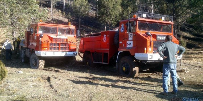 Imagen del incendio en Muriel Viejo, el primero reseñable este 2015. / SN