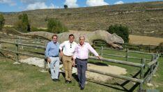Ruta de las Icnitas en Soria